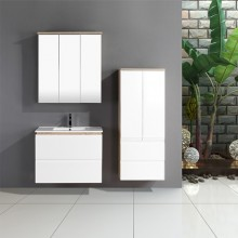 Australia Popular Online Two-pack Vanities With Mixed Color Covering